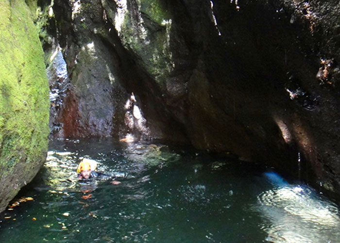 swimming canyoning madeira